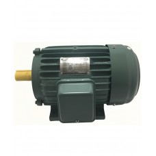FGT Induction Motor ( Copper Wire ) Three Phase, 220V, 60Hz.