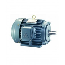 Teco Induction Motor ( Copper Wire ) Single Phase, 220V, 60Hz.