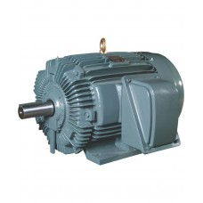Teco Induction Motor ( Copper Wire ) Three Phase, 220V, 60Hz.